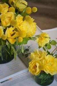 Bouquet de roses de jardin, craspedias et chasmanthiums
