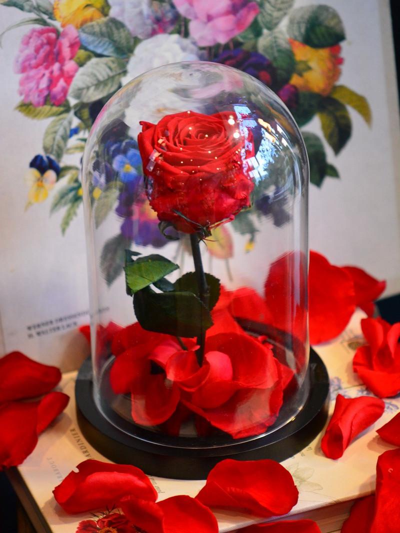 Offrez une rose naturalisée pour la Saint-Valentin